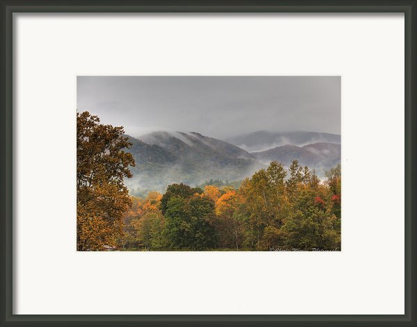 Misty Morning Iv Framed Print By Charles Warren
