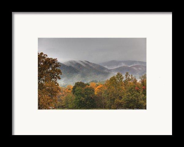 Misty Morning Iv Framed Print By Charles Warren