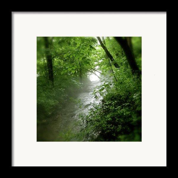 Misty Stream Framed Print By Tina Valvano