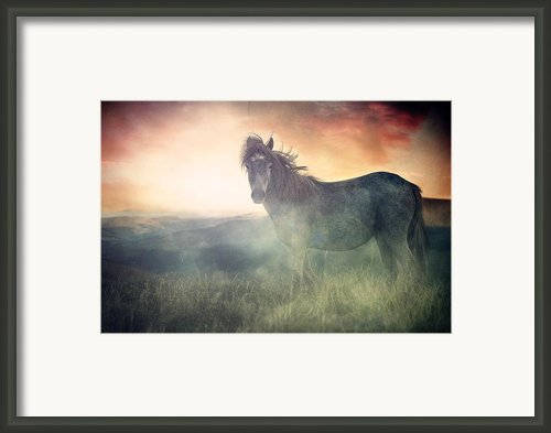 Misty Sunset Framed Print By Lee-anne Rafferty-evans
