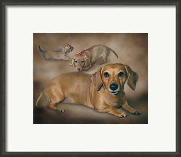 Molly Framed Print By Barbara Hymer
