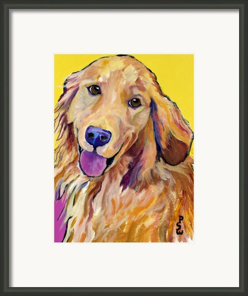 Molly Framed Print By Pat Saunders-white