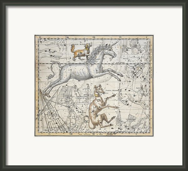 Monoceros Framed Print By A Jamieson