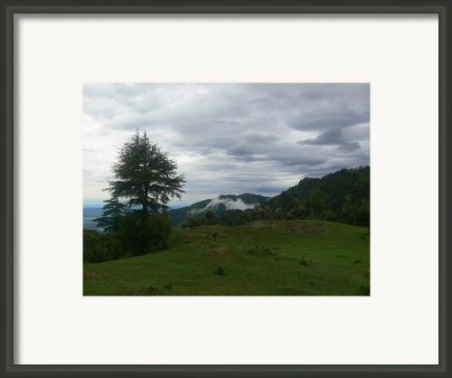 Monsoons Over Park Estate Framed Print By Padamvir Singh
