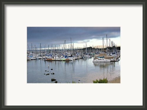Monterey Harbor - California Framed Print By Brendan Reals