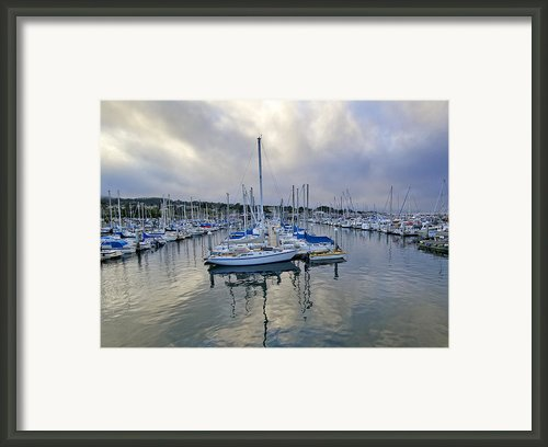 Monterey Harbor Marina - California Framed Print By Brendan Reals