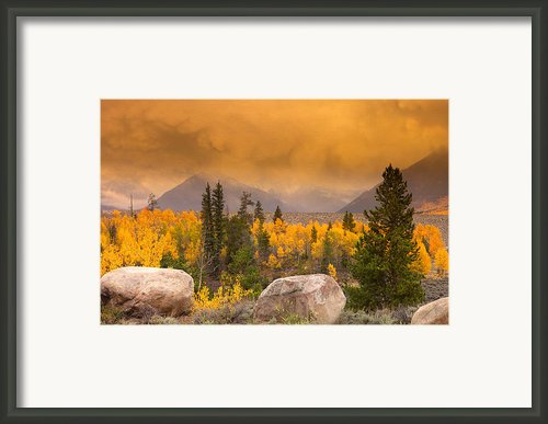 Moody Framed Print By Tim Reaves