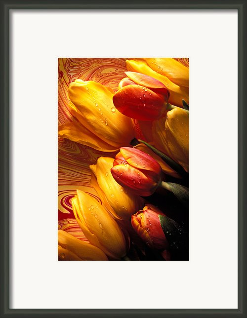 Moody Tulips Framed Print By Garry Gay