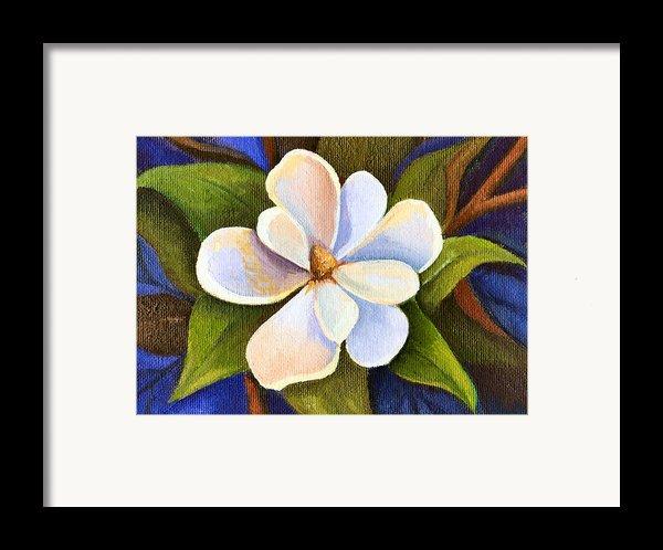 Moon Light Magnolia Framed Print By Elaine Hodges