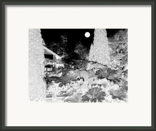 Moon Over Stanley Park Framed Print By Will Borden