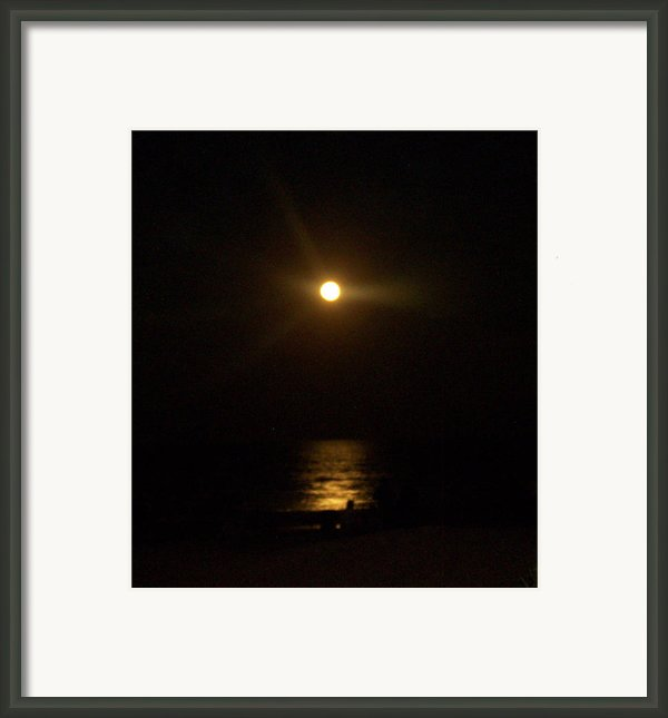 Moonlight Magic Framed Print By Patricia Taylor
