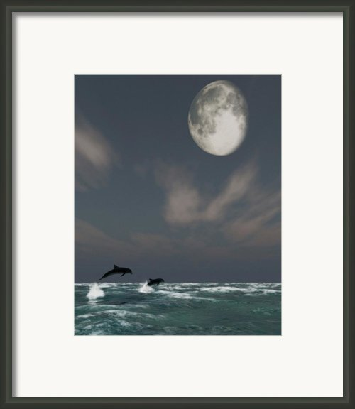 Moonlight Swim Framed Print By Richard Rizzo