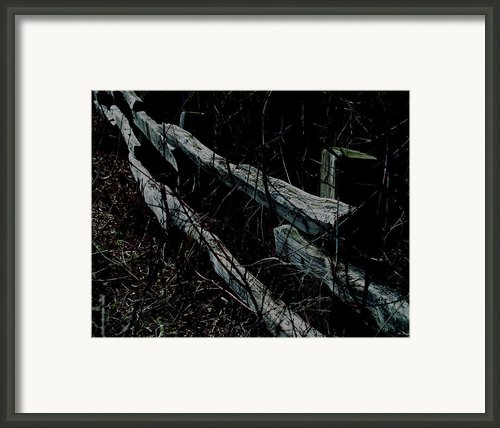 Moonlitboundry Framed Print By Robert Trauth