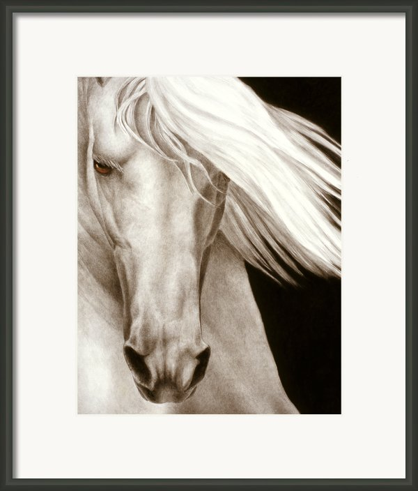 Moonrise Framed Print By Pat Erickson