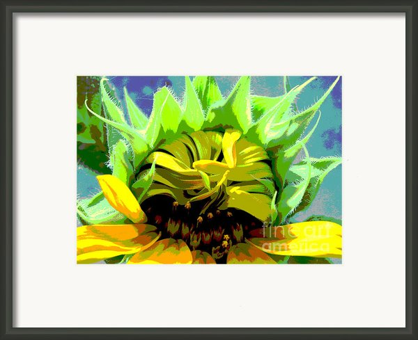 Morning Awakening Framed Print By Lori  Pagliaro