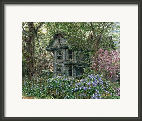 Morning Glory Framed Print By Doug Kreuger