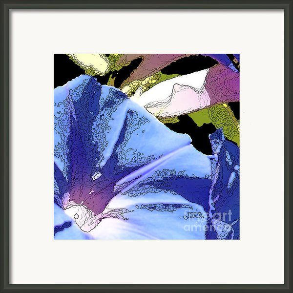 Morning Glory Framed Print By Author And Photographer Laura Wrede