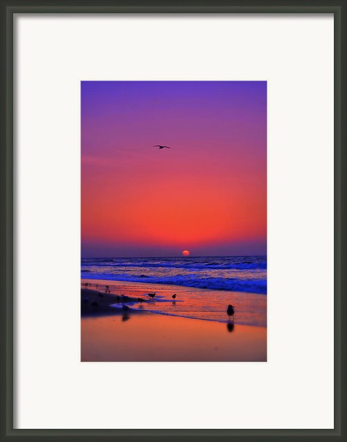 Morning Hope Framed Print By Emily Stauring