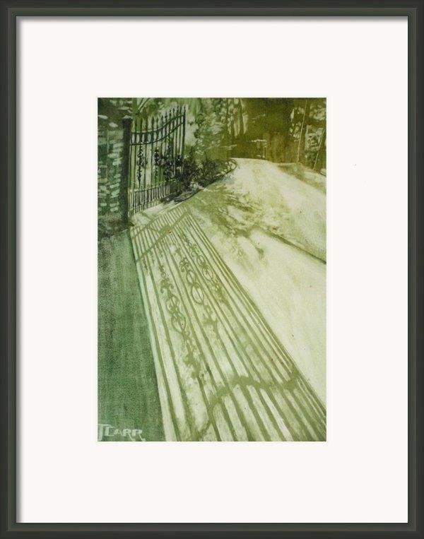 Morning Light Framed Print By Elizabeth Carr