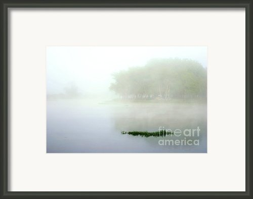Morning On The Parana Framed Print By Balanced Art