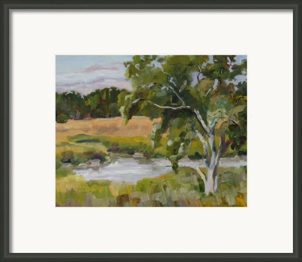 Morning Transition Framed Print By Barbara Benedict Jones