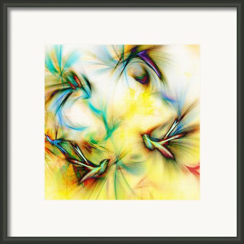 Morning Tweeters Framed Print By Paul St George