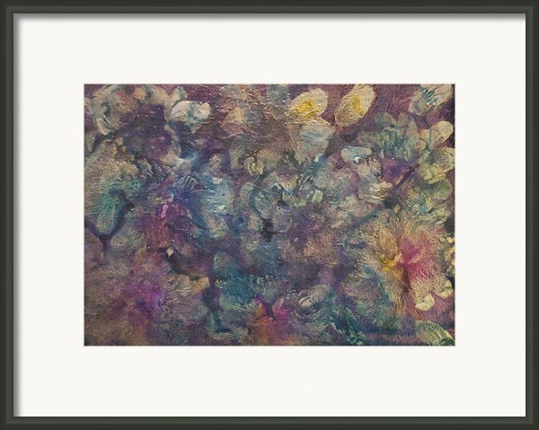 Mother Of Pearl Framed Print By Don  Wright