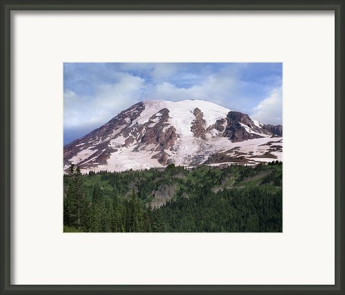 Mount Rainier With Coniferous Forest Framed Print By Tim Fitzharris