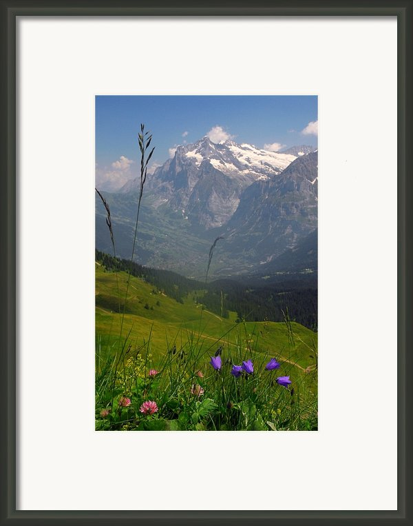 Mount Wetterhorn And The Grindelwald Framed Print By Anne Keiser