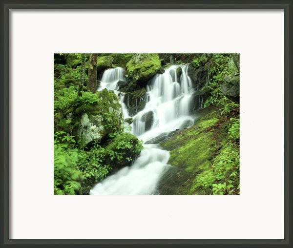 Mountain Falls Framed Print By Marty Koch
