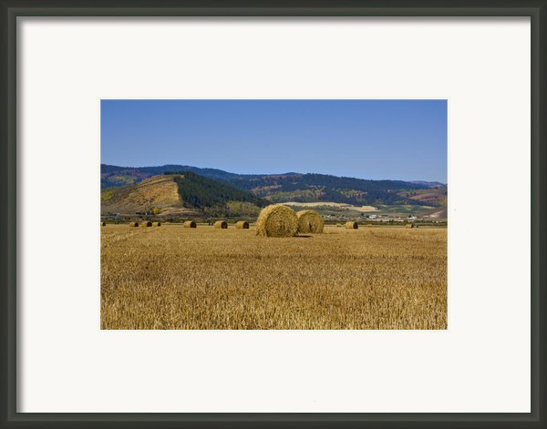 Mountain Farm Framed Print By Mark Smith