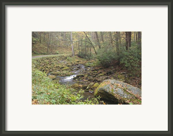 Mountain Stream Framed Print By Cindy And Dave Hicks