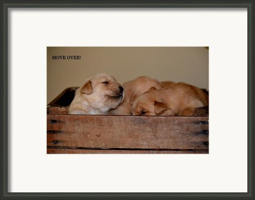 Move Over Framed Print By Brenda Alcorn