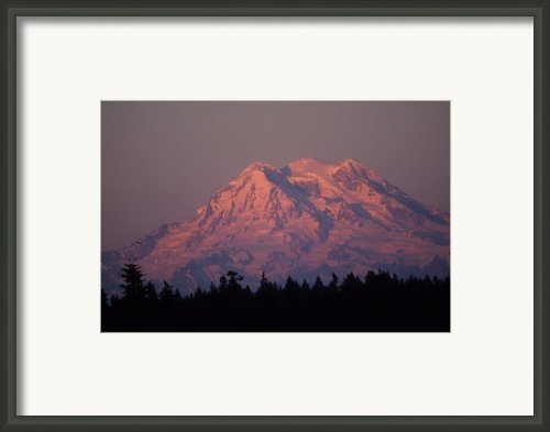 Mt. Rainier Washington Framed Print By Robert  Torkomian