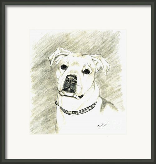 My Bella Framed Print By Joette Snyder