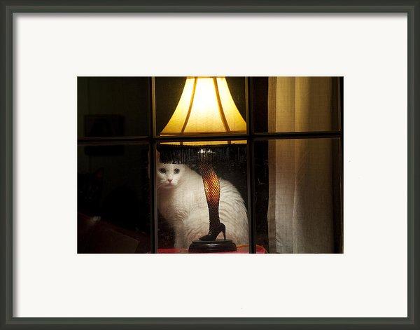 My Major Award Framed Print By Kenneth Albin
