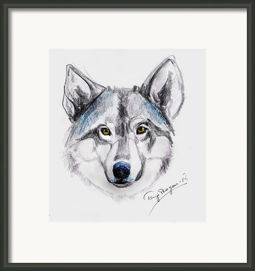 My Wolf Spirit Framed Print By Tarja Stegars