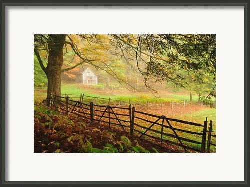 Mystique - A Connecticut Autumn Scenic Framed Print By Thomas Schoeller