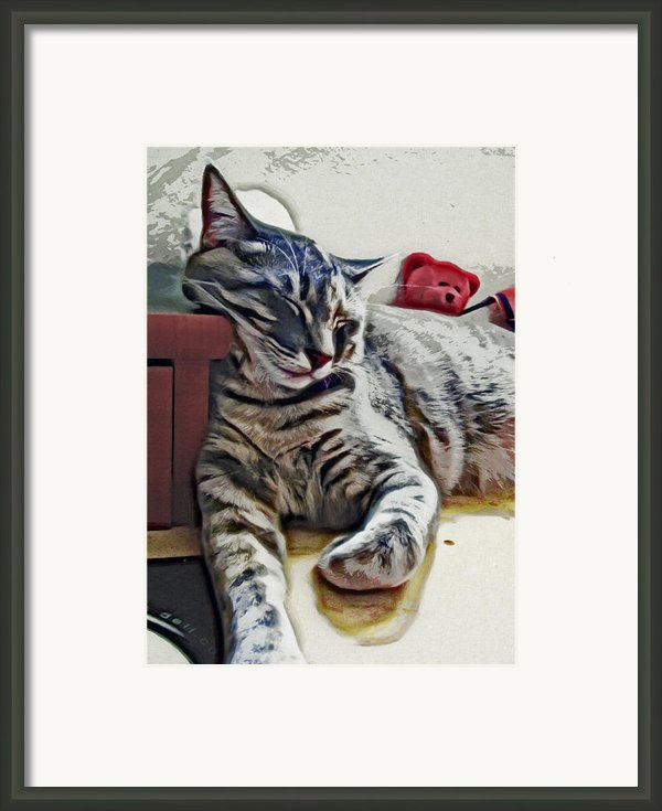 Nap Number Ten Framed Print By David G Paul