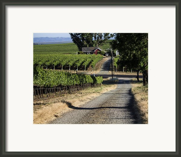 Napa Farmhouse Framed Print By Dee  Savage