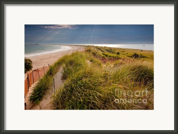 Napatree Point Preserve Framed Print By Susan Cole Kelly