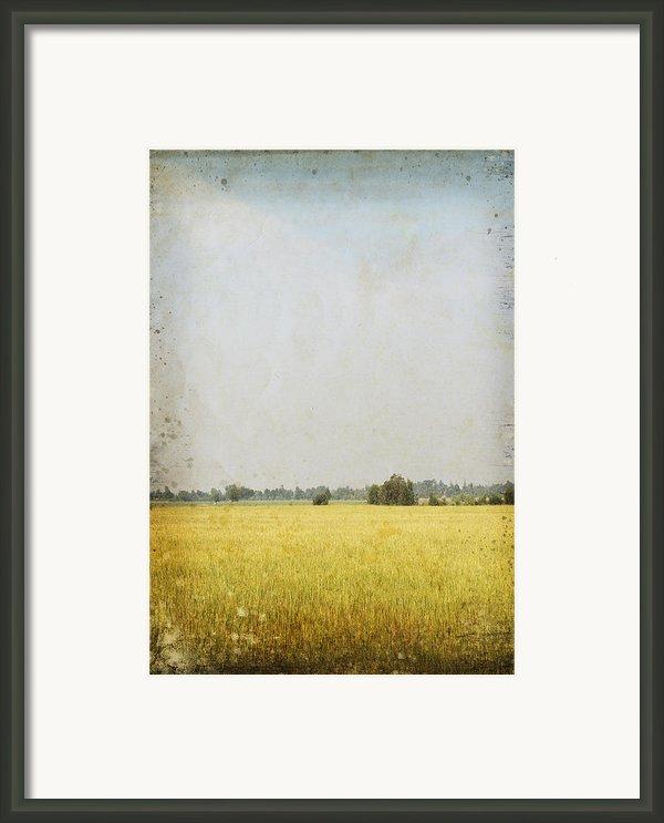 Nature Painting On Old Grunge Paper Framed Print By Setsiri Silapasuwanchai