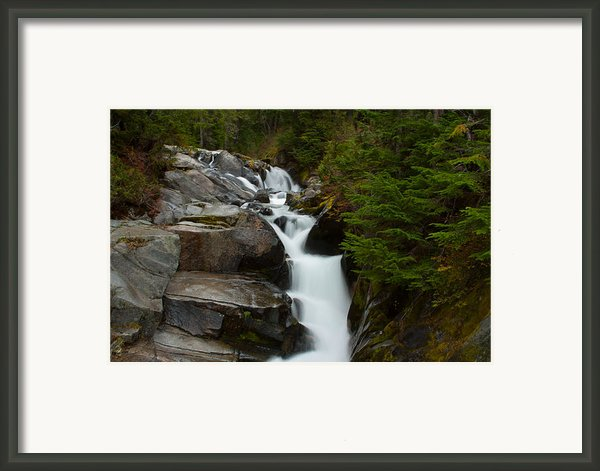 Natures Steps Framed Print By Robert  Torkomian