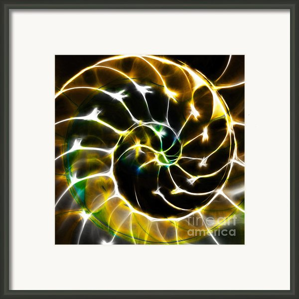 Nautilus Shell Ying And Yang - Electric - V1 - Gold Framed Print By Wingsdomain Art And Photography