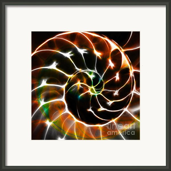 Nautilus Shell Ying And Yang - Electric - V1 - Orange Framed Print By Wingsdomain Art And Photography