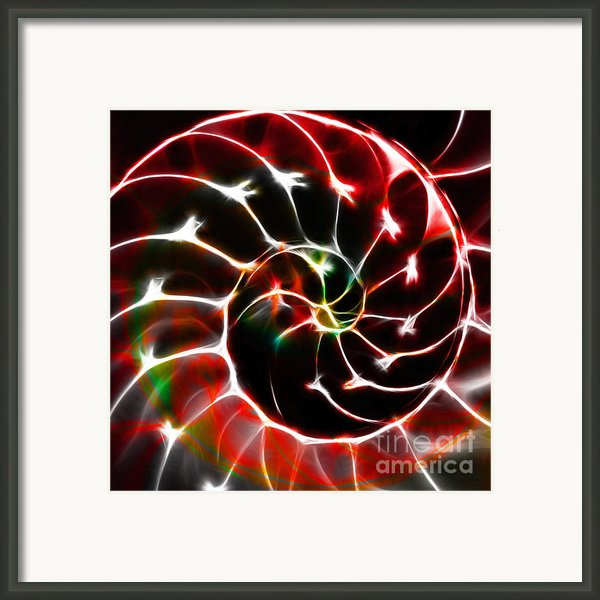 Nautilus Shell Ying And Yang - Electric - V1 - Red Framed Print By Wingsdomain Art And Photography