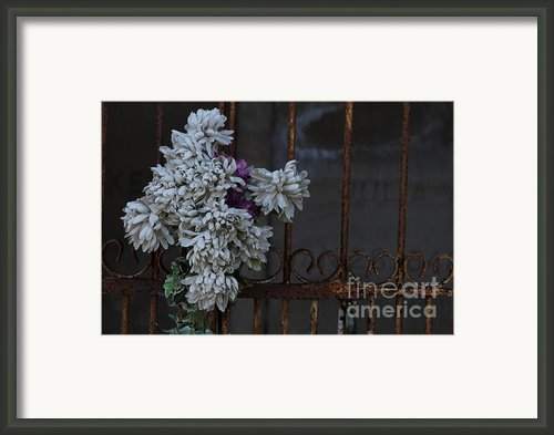 Never Forgotten Framed Print By Ralph Hecht