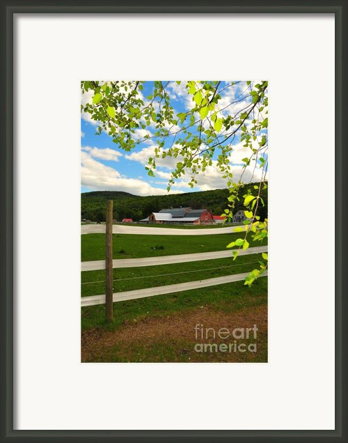 New England Farm Framed Print By Catherine Reusch  Daley