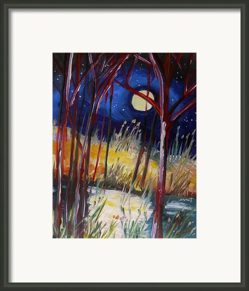 Night Dance Framed Print By John  Williams
