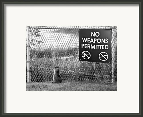 No Weapons Permitted Framed Print By Bob Orsillo